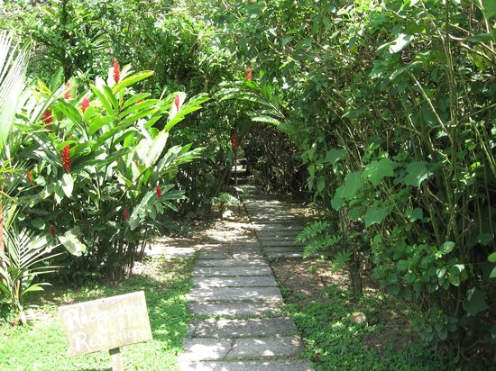 Rancho Margot: GARDEN PATH INTO RESTAURANT