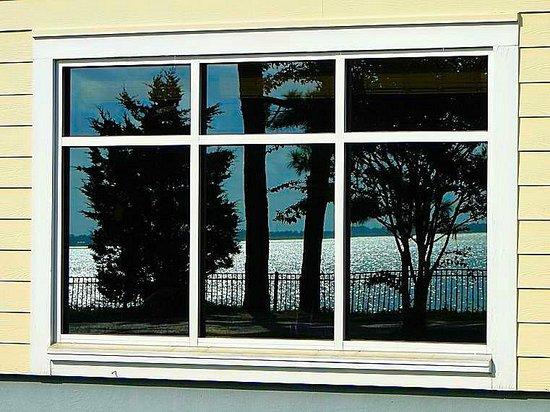 North Carolina Aquarium on Roanoke Island: reflection in outside window