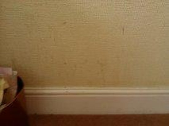 Britannia Hotel Stockport: Poor photo but some dirt on the wall