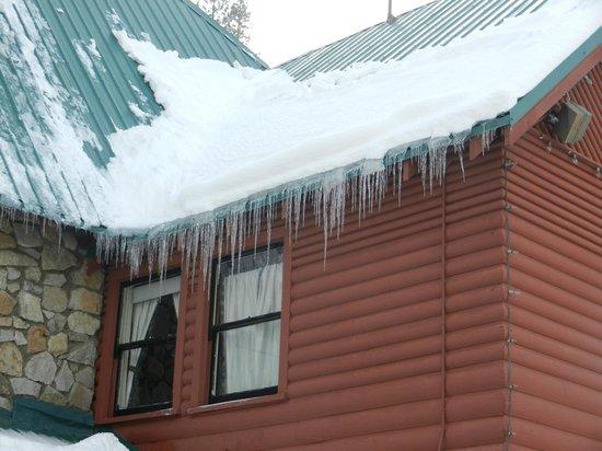 Rainbow Lodge: Great Winter Scenes!