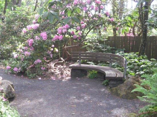 Eugene, Oregón: Rhododendron Garden
