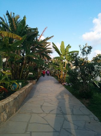 Louis Ledra Beach: the walkway from hotel to pathos