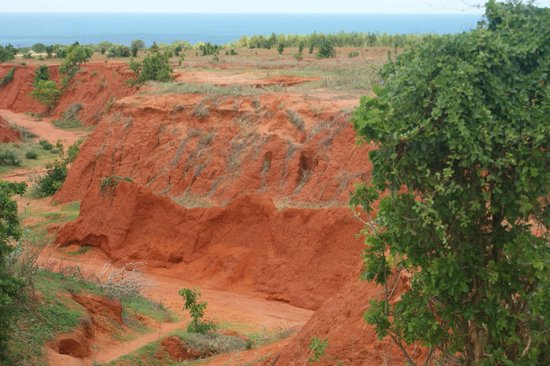 Red Dunes: очень необычно!!