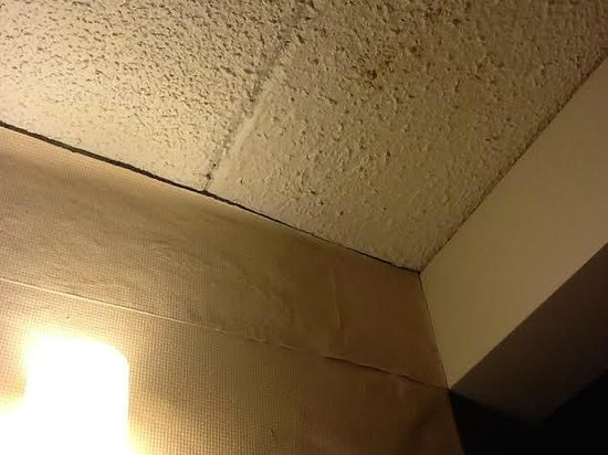 Sheraton Portland Airport Hotel: Ceiling stained and wall paper patches