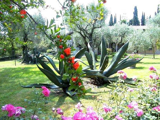 Amazing Villa Paradiso: Il Giardino Pieno Di Fiori