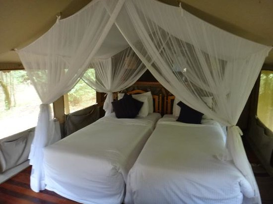 Sarova Mara Game Camp: Interior