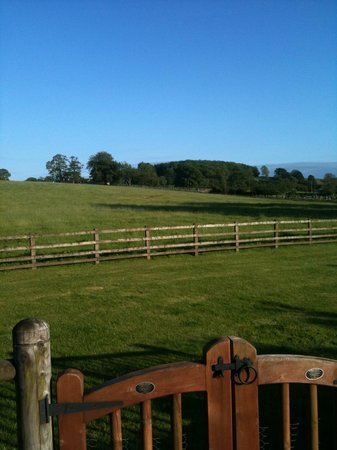 Ribblesdale Park: View from lodge