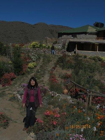 La Granja Del Colca: Con el restaurante en la parte posterior