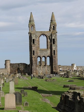 Exploring Fife - Day Tours