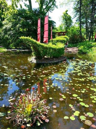 Ladew Topiary Gardens: Ladew Garden