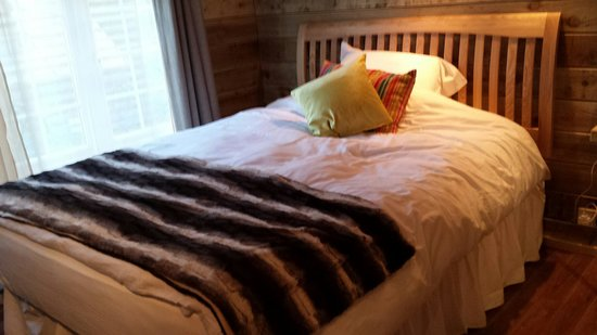 Bothy in Grayshott: Cracking very comfortable bed and cabin