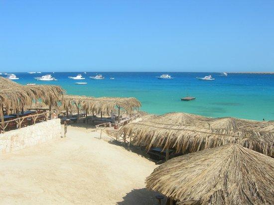 Mahmya Island : vista dal bar....