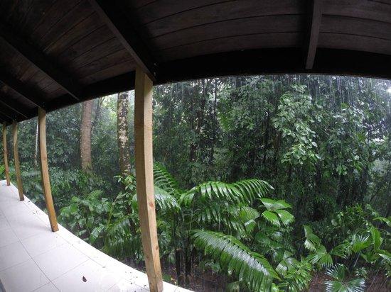 Oxygen Jungle Villas : Room