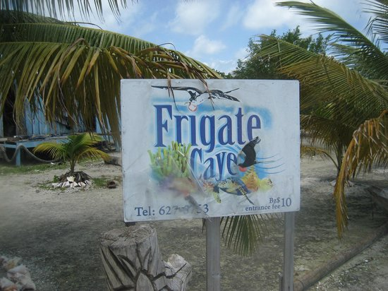 Cayequest Private Tours: Frigate Caye