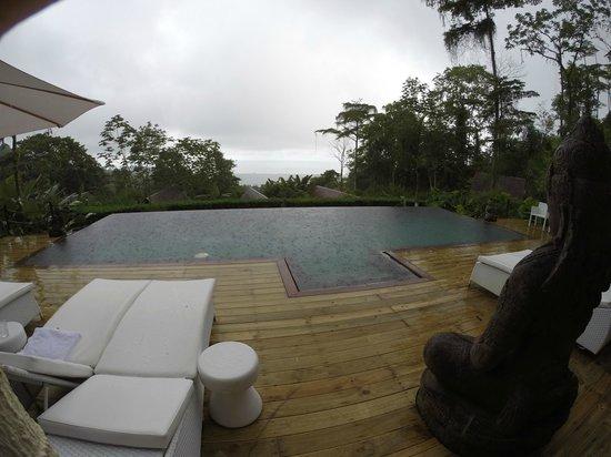Oxygen Jungle Villas: Pool