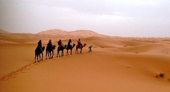 Hotel Riad Ali : Camel trek