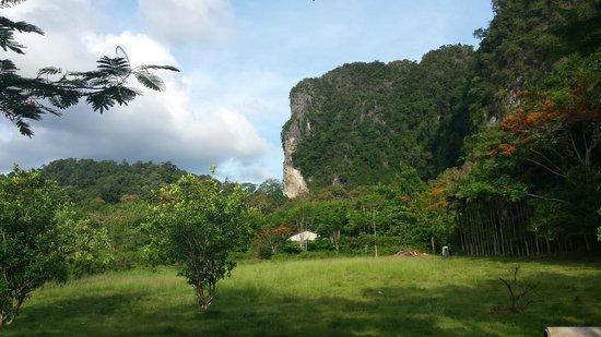 Aonang Cliff View Resort: redor do resort