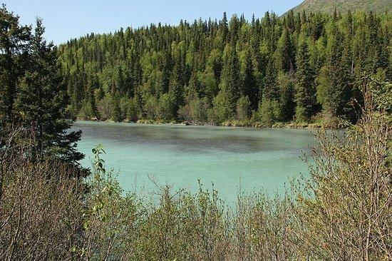 Alaska Heavenly Lodge: Lake walking distance from Heavenly Lodge