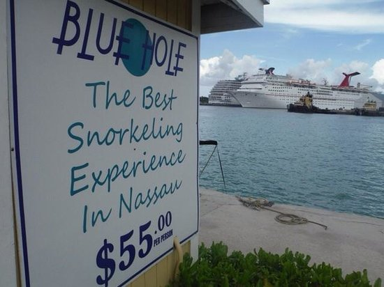 Blue Hole Watersports : Neat Deal in Nassau