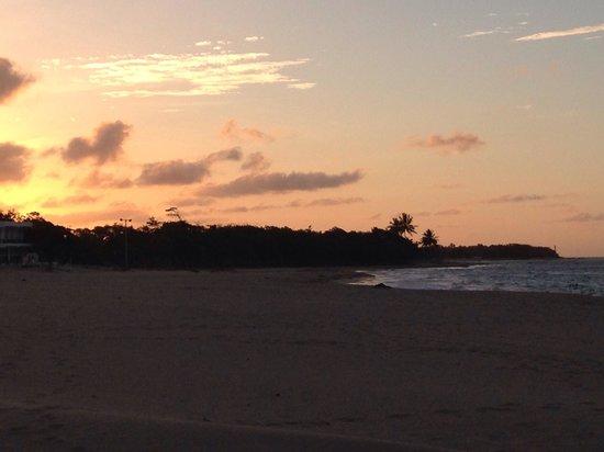 Blue JackTar: The sunset!