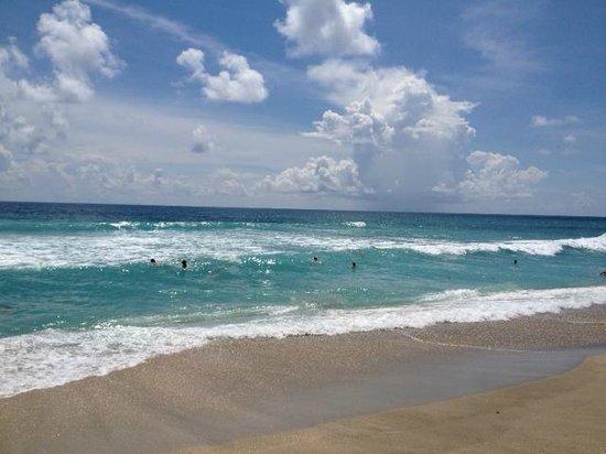 Marriott Beach Resort and Marina Hutchinson Island : Enjoy the water