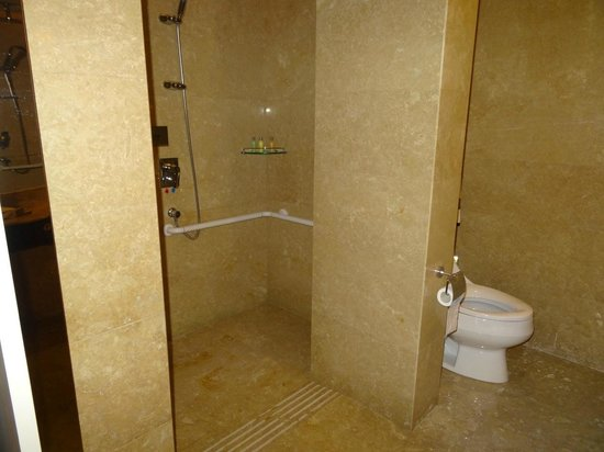 Wheel-chair accessible shower - sprayed water everywhere - Picture ...