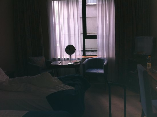 Ashling Hotel : superior twin room