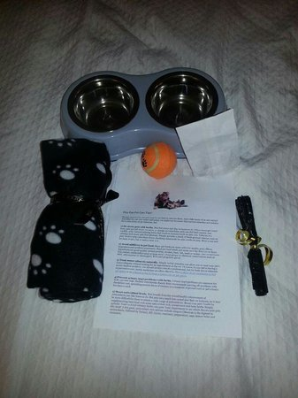 Prince George Hotel: Each of my dogs recieved one of these great gift packages - along with a sign to hang on the doo