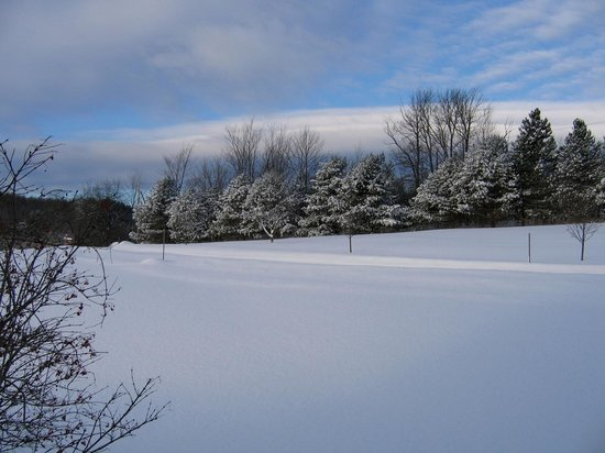 Quiet Valley Bed and Breakfast: Winter view from the back of the B&B