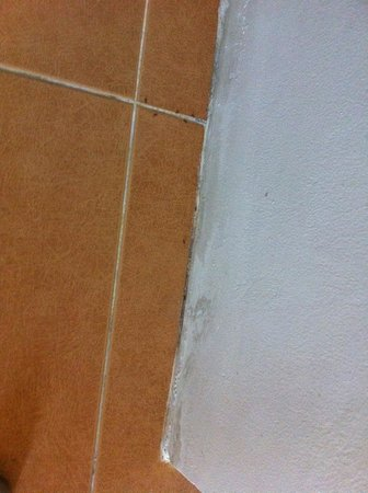 Tagaytay Wingate Manor: ANTS!!!