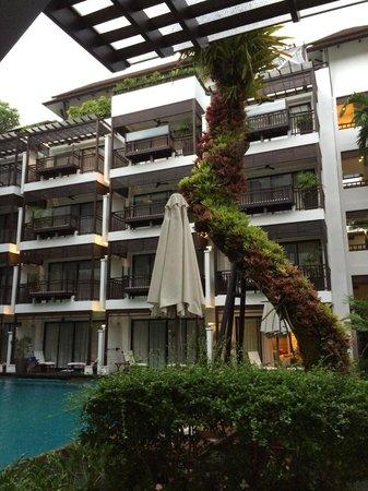 RarinJinda Wellness Spa Resort: Beautiful dead lychee tree decorated with plants