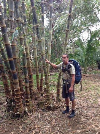 Hike Maui : Jake with Bamboo