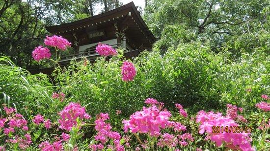 Jochiji Temple: 三門
