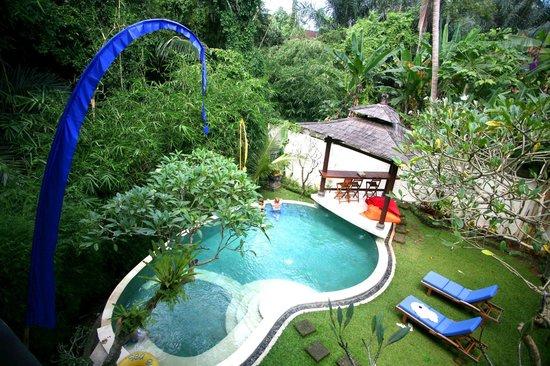 Villa di Abing: Pool & garden