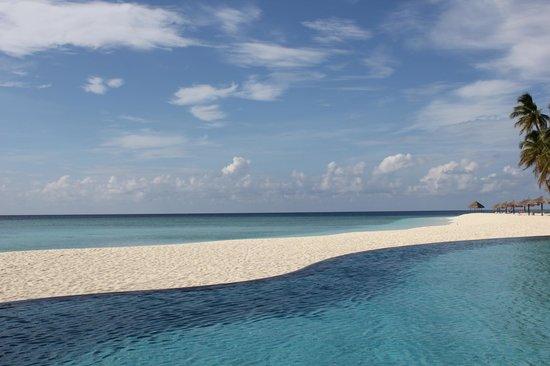 Veligandu Island Resort & Spa: great shot of pool/sand/sea