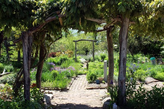 Ansel Gurney House: Part of the rambling, rustic gardens.