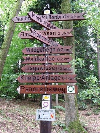 Waldcafé: Path markers near Waldcafe
