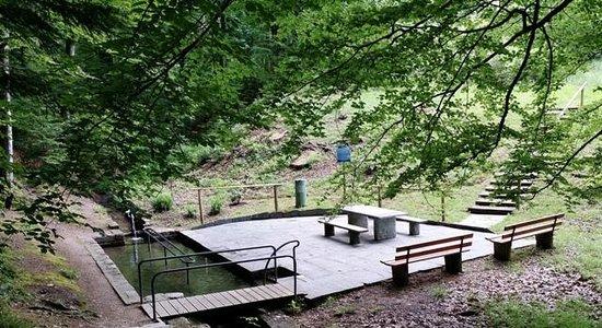 Waldcafé: Kneipp.2 km from Waldcafe