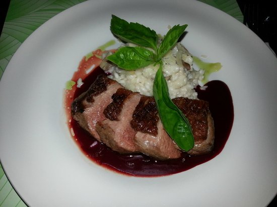 Mini: Roasted Duck Breast with Wild Mushroom Risotto and Red Beet Sauce