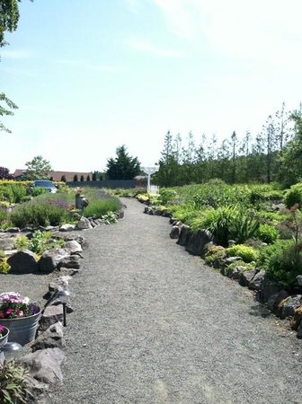 Nourish Sequim: Lushly landscaped entry sidewalk