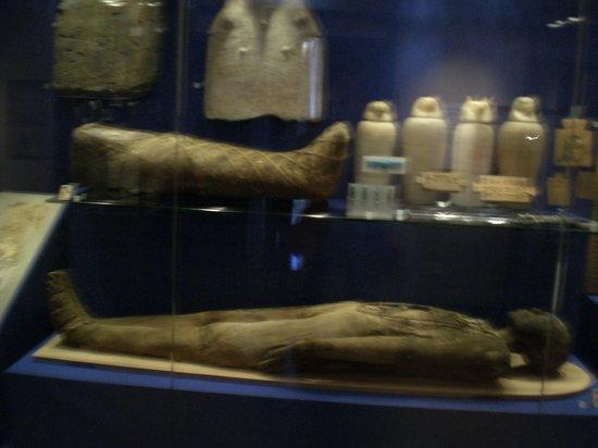 World Museum : Egyptian Mummies