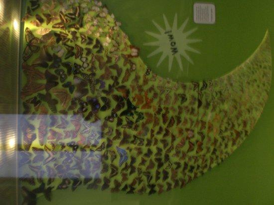 World Museum: Butterflies, beautifully arranged....
