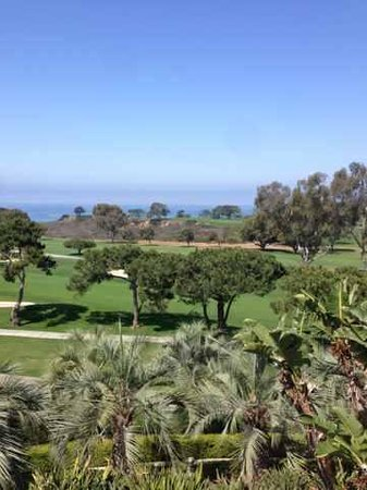 Hilton La Jolla Torrey Pines : View from room