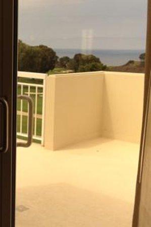 Hilton La Jolla Torrey Pines : View from balcony