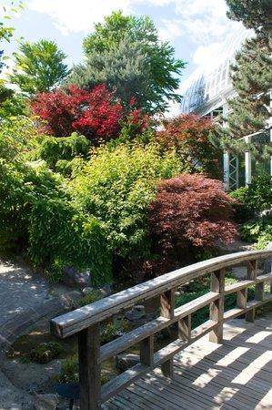 Phipps Conservatory: Japanese Garden