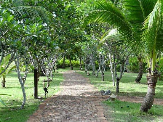 Rayavadee Resort: Well manicured walks