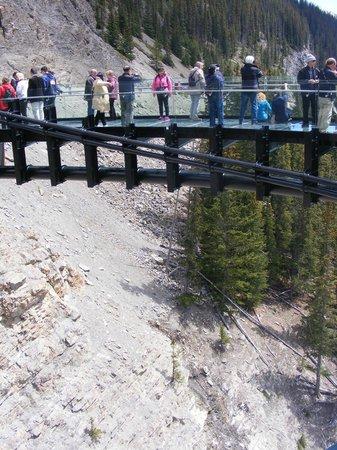 Columbia Ice Field: People on Skywalk Jasper National Park