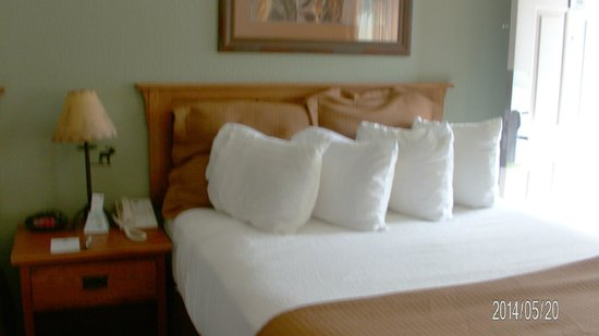 Best Western By Mammoth Hot Springs: Bed room