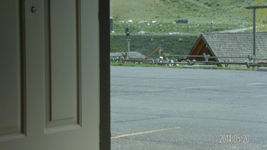 Best Western By Mammoth Hot Springs: from room