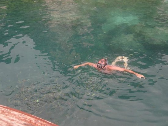 Zeavola Resort : Swim with the FISH !!!!
